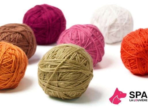 Action : récolte de laine au profit de la Spa de La Louvière !