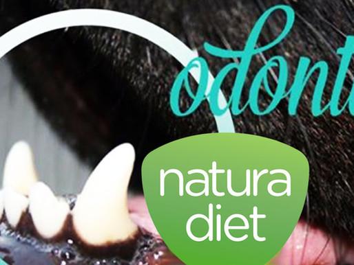 Alimentation: la nouvelle brosse à dents pour chien !