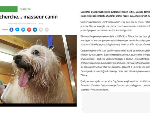 Dans l'Avenir ! recherche masseur canin !