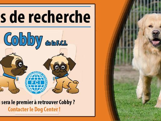 Concours : Mais ou est Cobby ? Deux weekend en pension à gagner !