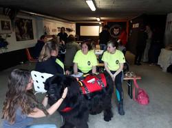 Formation Dog Center
