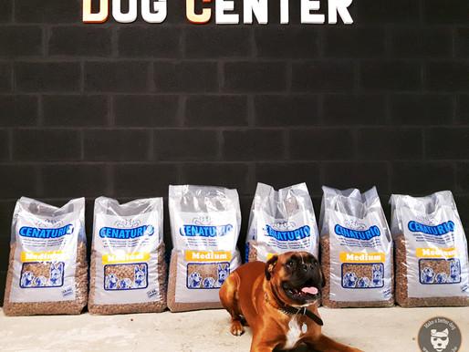 Concours : un zèbre au Dog Center : Bravo à Cassius!