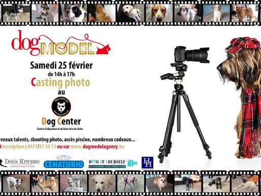 L'agence Dog Model investit le Dog Center pour une journée casting!