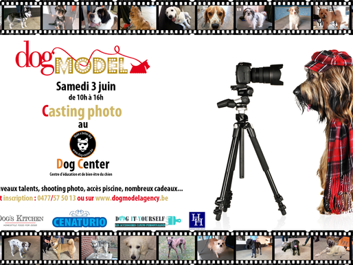 Journée casting : Dog Model Agency au Dog Center!
