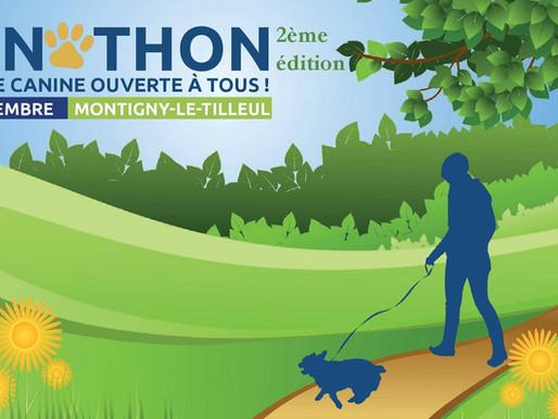 Cynothon : 2ème édition : Venez nombreux !
