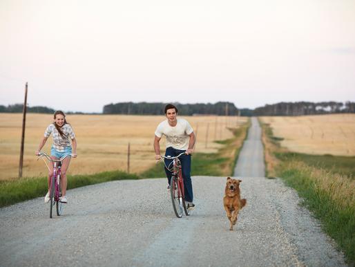 Mes vies de chien : Résultats du concours