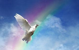 Transformez croyances et emottions négatives - La joie de vivre - Nyon Suisse