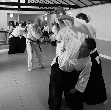 Aikido in action Sensei