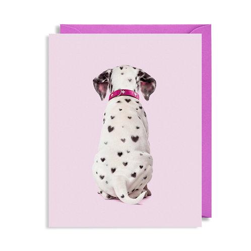 Mini Card - Dalmatian