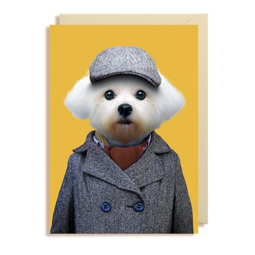Card - Maltese Dog