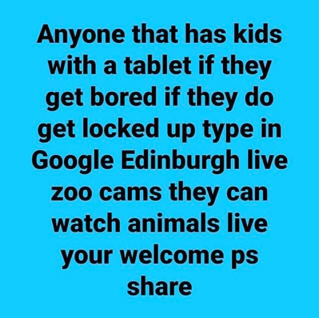 Edinburgh live zoo