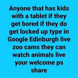 Edinburgh live zoo