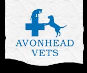 Avonhead Vets logo