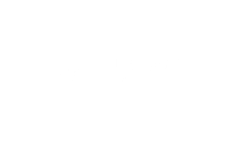 Blue Wave Financial Logo