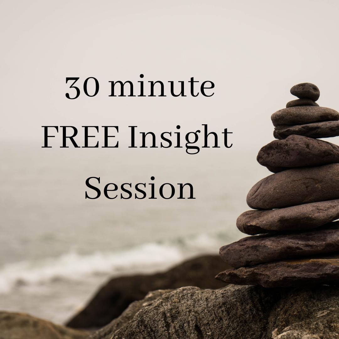 30min FREE Insight Session
