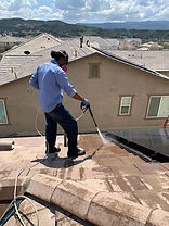 Los Angeles Pigeon Removal