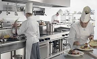 Commercial Pest Control For Restaurants