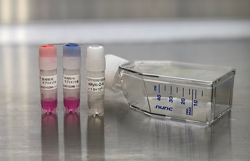 MiCAN-cMylc(コロナウイルス最適化骨髄系細胞)キット