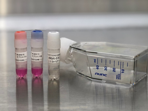 The first human-derived cells optimised for COVID-19 vaccine/drug development and safety assessment