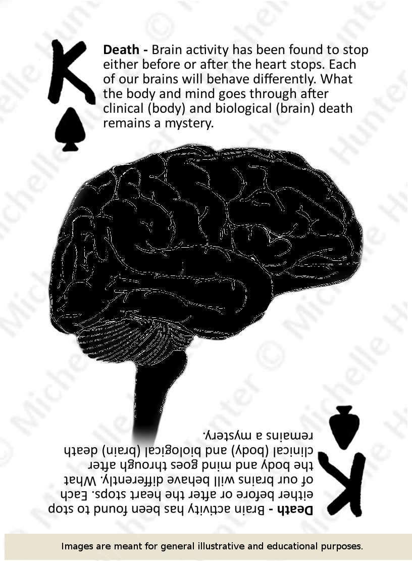 k of spades