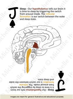 J of spades