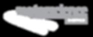 Motorscience logo Specialist Porsche Servicing Auckland