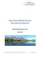 NIWA Lake Hayes remediation options.png