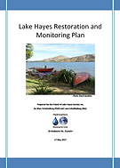 Lake_Hayes_remediation_options.png