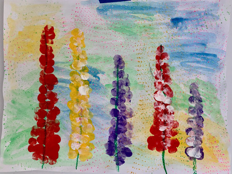 5/18/20 1st, 2nd, 3rd Lupine Flowers & Texture Background