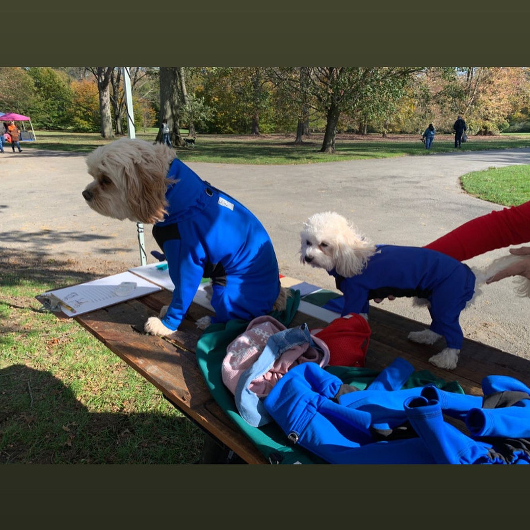 Jaxx and Louie showing off these long sleeve canine coats