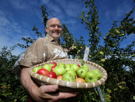 Scotland's native apples saved by school pupils and communities