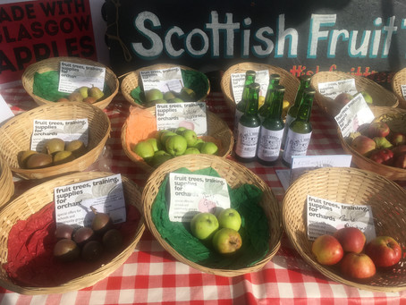 Scottish Apples on the Up