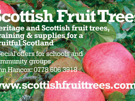 Fruit trees for schools and nursery schools