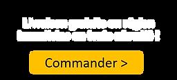 Commander-FR-V2.png