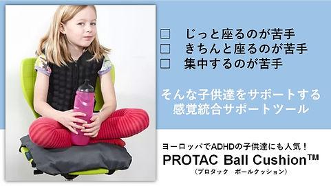PROTACボールクッション.jpg