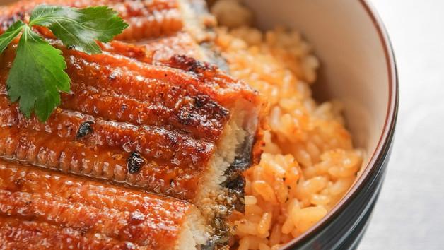 蒲燒鰻魚飯 Unagi Donburi - Aal Kabayaki auf Sushireis