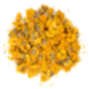 Dried chrysanthemum flowers isolated on