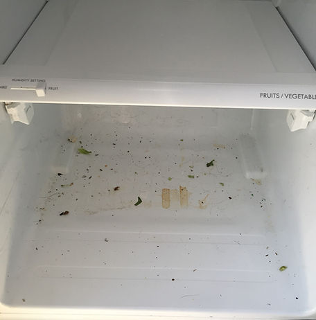 Inside Refrigerator - Before Cleaning