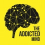 Emily on The Addicted Mind Podcast