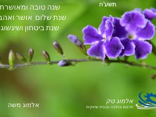 שנה טובה ללקוחותינו ולכל בית ישראל