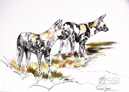 WILD DOGS - INDIAN INK
