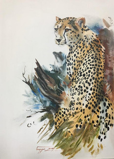 BLENDING WITH NATURE - OIL ON 100% COTTON CANVAS - 50 x 70cm
