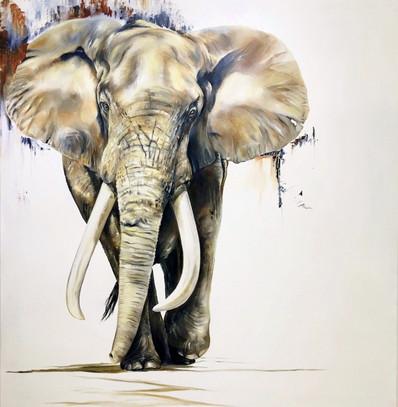 ELEPHANT RAMBLE - OIL ON CANVAS - 1.5m x 1.7m