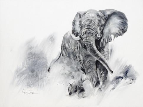 KEEP YOUR DISTANCE, ELEPHANT - OIL ON CANVAS - 90 x 120 cm