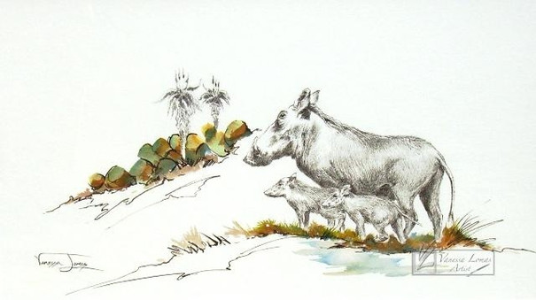 WARTHOGS - INDIAN INK & COLOUR INK -  40 x 60 cm - FRAMED