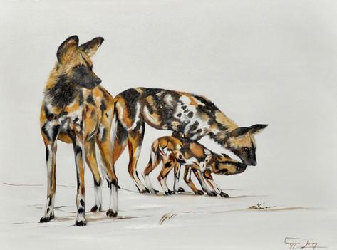 FEEDING TIME WILD DOGS - OIL ON CANVAS - 56 x 76 cm