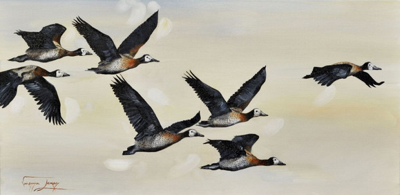DUCKS IN FLIGHT - OIL ON CANVAS - 38 x 76 cm