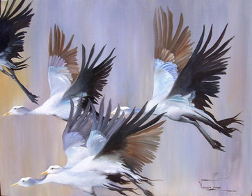 FLIGHT OF THE BLUE CRANES