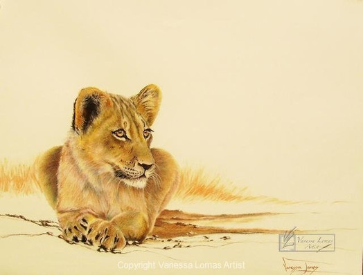 YOUNG LION - PASTELS
