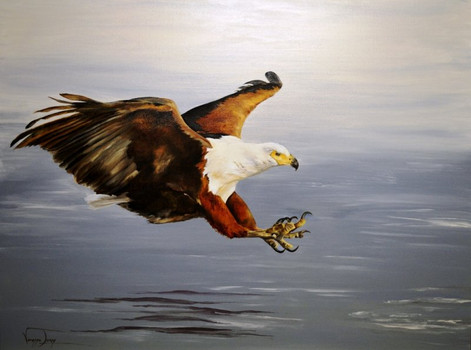 FISH EAGLE IN ACTION - 60 x 90 cm
